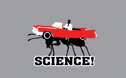 science_ant_car.png